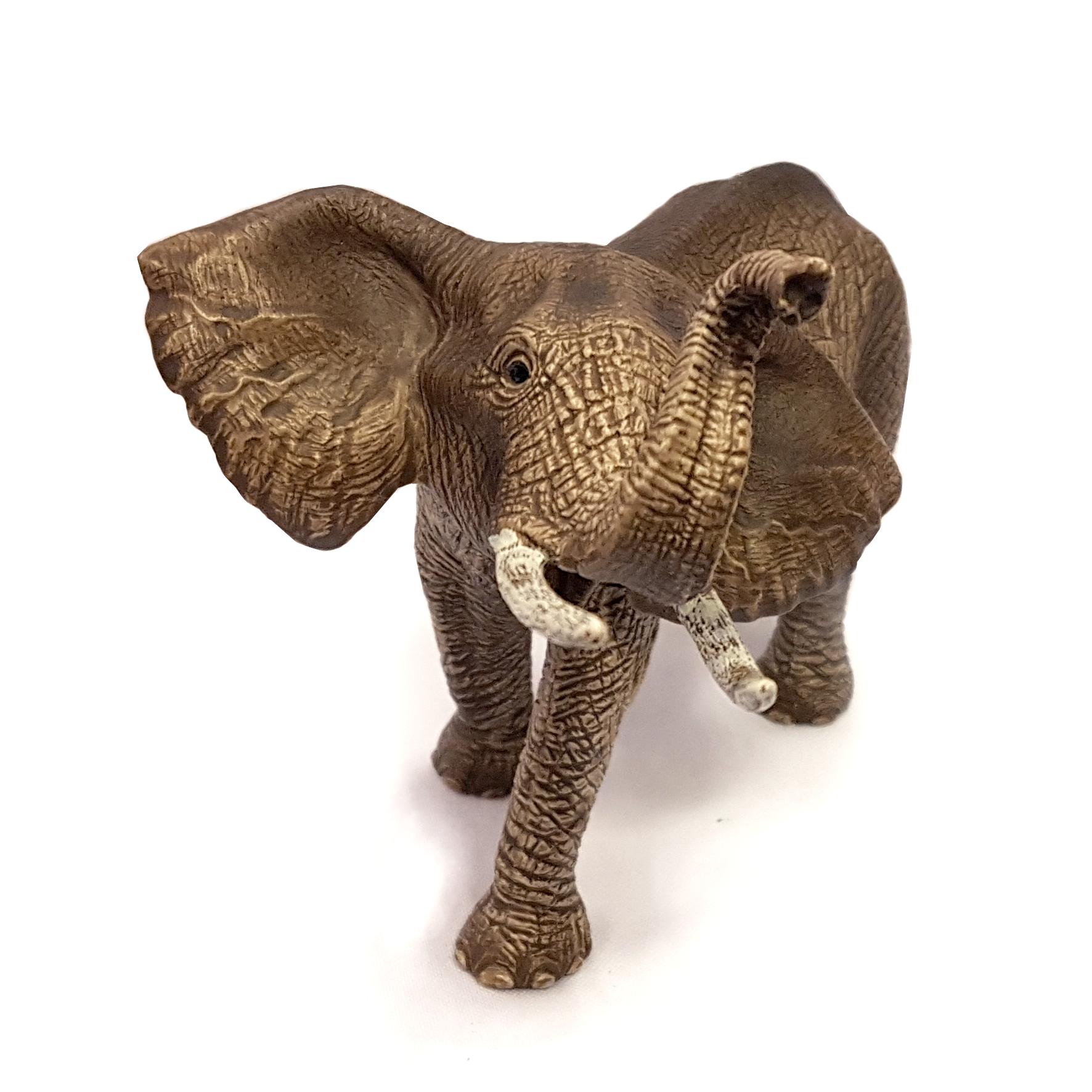 norsu elefantti savanni safari